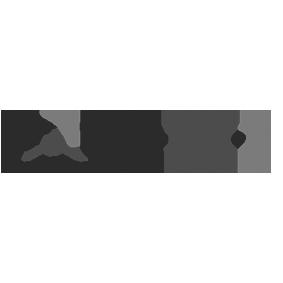 Logo grau / Check Engel 24